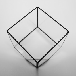 Medium Cube Terrarium