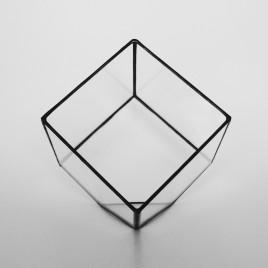 Small Cube Terrarium
