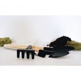 Terrarium Kits + Tools