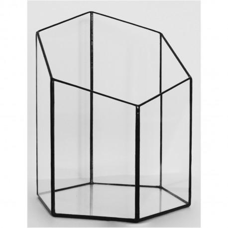 Hexagonal Prism Terrarium